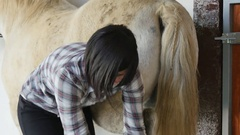 Beautiful brunette young woman cleans the horse's hooves Stock Footage