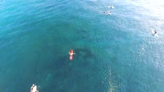 Lots of surfers in ocean. Balangan beach. View of cliffs. Aerial view. Bali Stock Footage