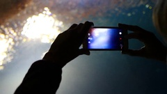 Woman shoot phone video of fishes behind glass tube under water aquarium Stock Footage