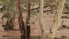 Tood River Alice Springs In Flood A Stock Footage