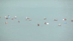 Floats oyster farm Stock Footage
