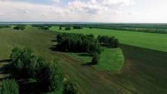 Bird view  ploughed field and forest 1 Stock Footage