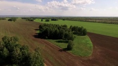 Bird view  ploughed field and forest Stock Footage