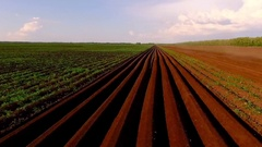 Copter view tractor on ploughed field 2 Stock Footage