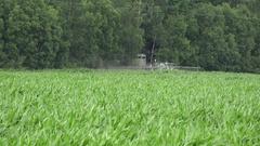 Tractor spray fertilize maize corn field with pesticide near forest. 4K Stock Footage