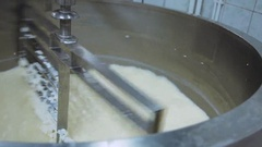 Technology of making cheese Stock Footage