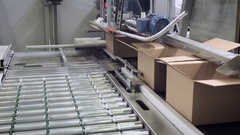 Boxes moves on packing line Stock Footage