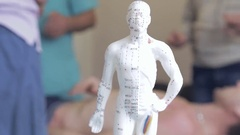 The Doctor Trains Medical Students, in the Foreground there is a Figurine. Stock Footage