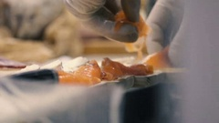 Chef lays out the pieces of red fish on the kitchen table in the restaurant Stock Footage