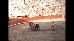 Vintage 16mm film, 1955, bullfighting bull dies then celebration Stock Footage