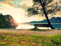 Empty bench at autumn mountain lake. Coast under bended tree Stock Photos