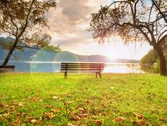 Strong flare defect, bench at mountain lake. Pond bank  tree, Stock Photos