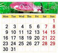 Calendar for October 2017 with mushroom russula Stock Illustration