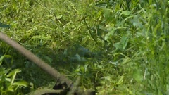 Cutting the grass with string trimmer Stock Footage