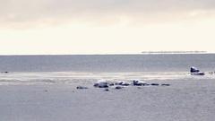 Winter sea landscape. Deserted shore, coastline, freezing sea water. Snowing. Stock Footage