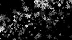 Broadcast Snow Flakes, Grayscale, Events, Loopable, 4K Stock Footage