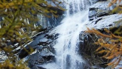 Stream in  fall with larches (Larix decidua) - Gran Paradiso National Park Stock Footage