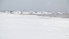 Snow covered beach. Winter sea landscape. D Stock Footage
