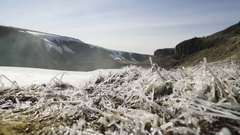 Frozen Plants And Windswept Snow On Landscape Stock Footage