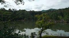 4K | Golden Pavilion (Kinkaku-ji) Stock Footage