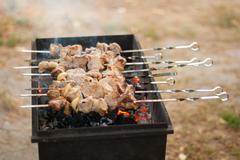 Meat skewers fried on the grill. Stock Photos