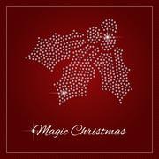 Rhinestone Holiday Season Template Stock Illustration