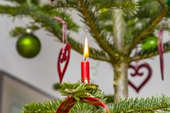Red candle with flame at the natural christmas tree Kuvituskuvat