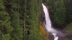 Aerial Composition with Forest Wall of Trees and Waterfall in Background Stock Footage
