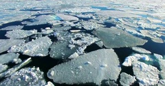 Flying over Arctic Ice Floes. Stock Footage