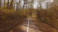 Footpath in autumn forest on clear sunny day. Steadicam shot. Stock Footage