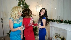 Girl says toast, Christmas Cheers, a group of girls drink alcohol from of wine Arkistovideo