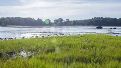 Tides: Atlantic, Slow Receding Tide with Grass during Day Stock Footage