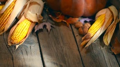 Corn cob on wooden table background. Happy Thanksgiving Day. Arkistovideo