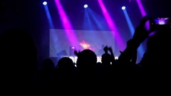 Crowd partying at music concert Stock Footage