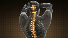 Backbone. backache. science anatomy scan of human spine bones glowing Stock Footage