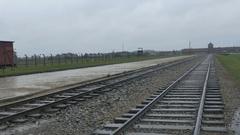 Rail Tracks at Birkenau Camp Stock Footage