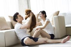Young couple playing with a pet poodle at home Stock Photos