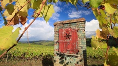 Chianti vineyard landscape in autumn, Tuscany, Italy Stock Footage