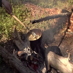 Outdoor Cooking Stock Footage