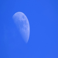 In the evening blue sky the full moon, clouds close the moon Stock Footage