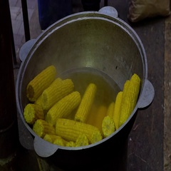Street food. Cooking corn in boiled water. Sweet corn preparation. Stock Footage