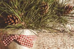 Pine branches with cones in zinc bucket close-up, instagram effect. Kuvituskuvat