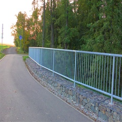 Road in nature and railings Stock Footage