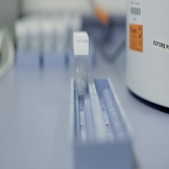Tissue Samples on Microscope Slides Stock Footage
