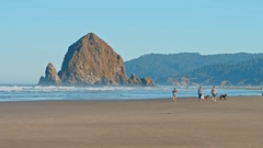 People walking and jogging on Cannon Beach in Oregon Stock Footage