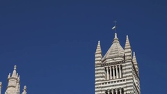 Siena Cathedral Bell Tower Stock Footage
