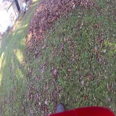 Leaf Shredder / Leaf  Vacuum Stock Footage
