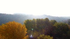 Backlit fall trees aerial to reveal river carving through a canyon. Stock Footage