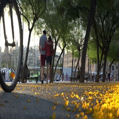 Couple in love walking through the park enjoying the day Stock Footage