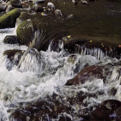 River in Smoky Mountains Stock Footage